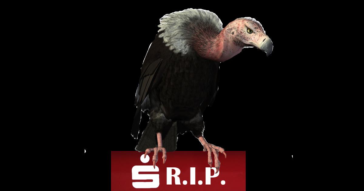 Geier + SPK + RIP
